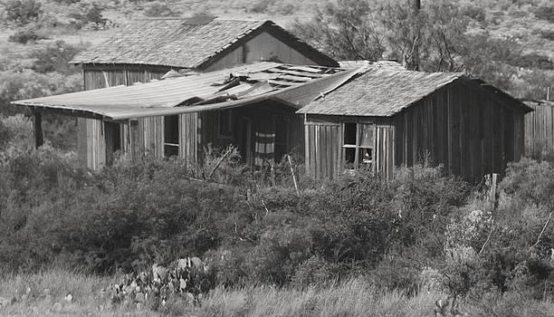 Joe Bledsoe - Home on the Range