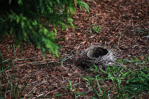 Bill Swartwout Fine Art Photography - Homeless Empty Nester