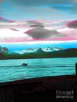 Homer Alaska by Sheila J Hall