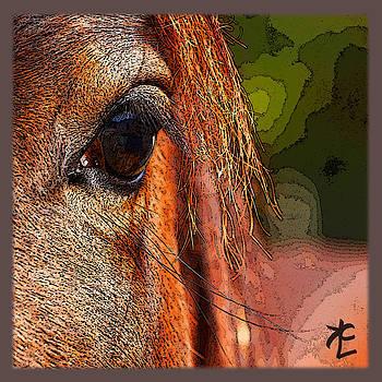 Honest Eye by Kelly Clower