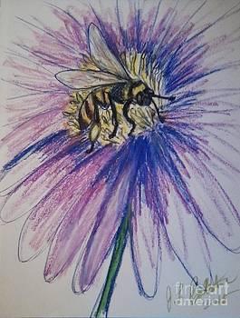Jamey Balester - Honey Bee on Flower