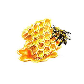 Irina Sztukowski - Honeycomb