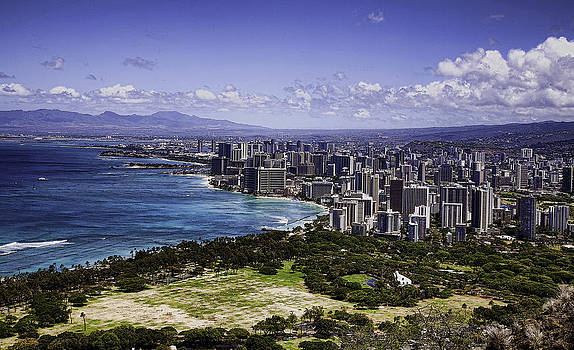 Honolulu from Diamond Head by Joanna Madloch
