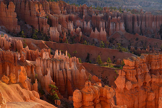 Hoodoo Glow At Sunrise by Stephen  Vecchiotti