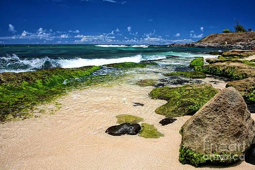 Kate McKenna - Hookipa Beach Rocks