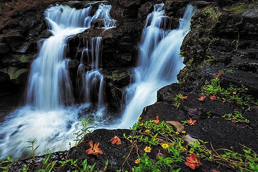 Ho'opi'i Falls by Hawaii  Fine Art Photography
