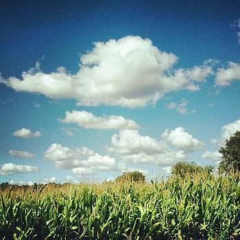 Hoosier Sky by Sandy MacGowan