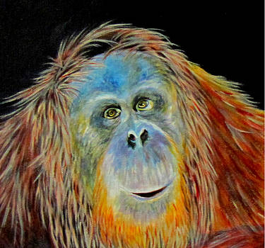 Susan Duxter - Hopeful Primate