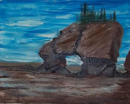 Hopewell Rocks by Tony  DeMerchant