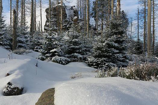 Hopfensack, Harz by Andreas Levi
