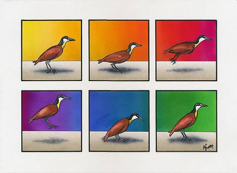 Hoppy Bird-day by Agustin Goba