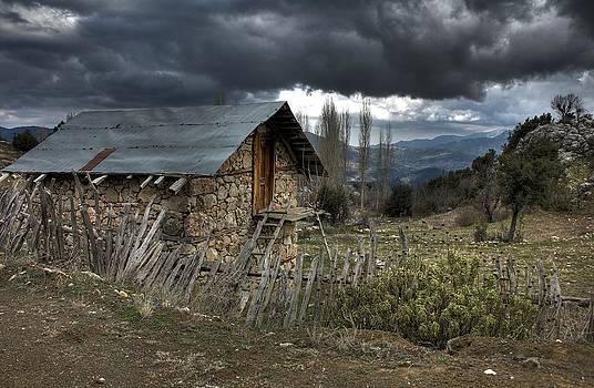 Horror by Kazim Yurekli