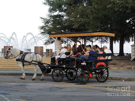 Horse and Buggy by Diane Greco-Lesser