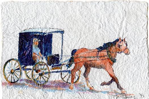 Horse and Buggy by Mary Haley-Rocks