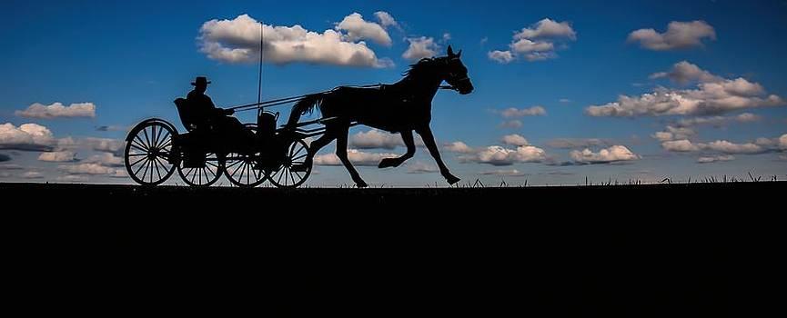 Horse and Buggy Mennonite by Henry Kowalski