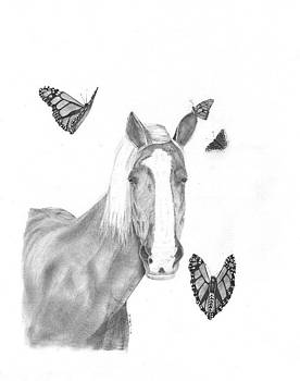 Horse and butterflys by Lloyd  Gardner