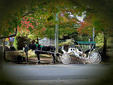 Horse and Carriage by Wendy McKennon