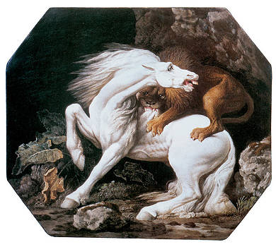 George Stubbs - Horse Attacked by a Lion