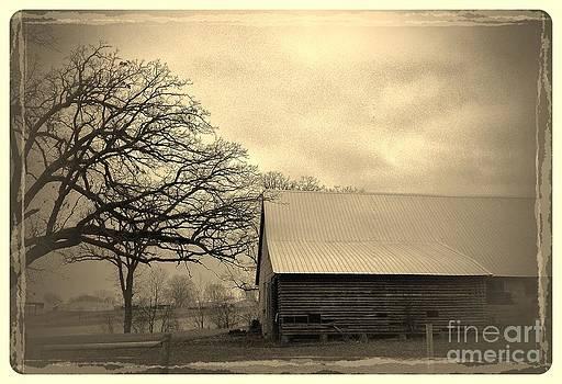Horse Barn by Garren Zanker