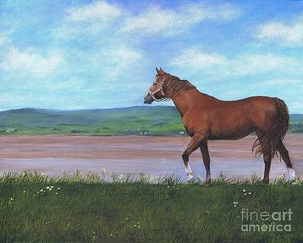 Horse By The Bay by Janice Guinan