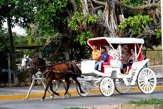 Horse Cart Granada by Lal Rodawla