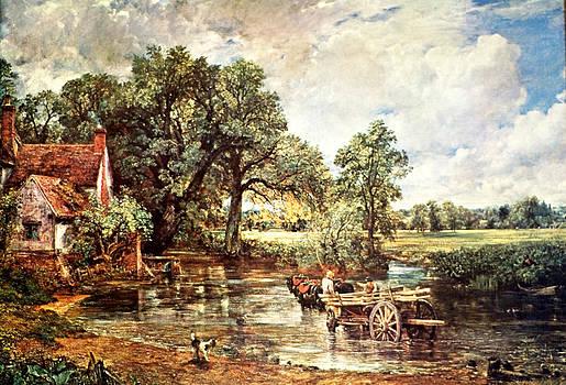 Devinder Sangha - Horse cart in swamp