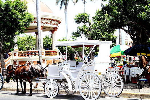 Horse Cart by Lal Rodawla