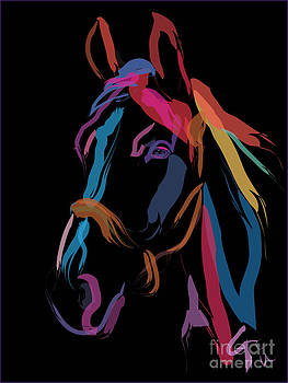 Horse-colour me beautiful by Go Van Kampen