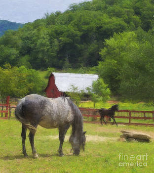 Jill Lang - Horse Farm Oil Painting