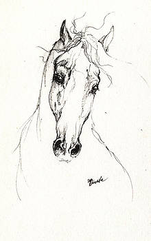 Angel Ciesniarska - Horse head study 2014 05 30