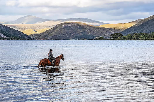 Horse in Airds Bay Loch Etive by Bel Menpes