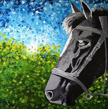 Horse in bushes. by Pawel Przemyslaw Pyrka