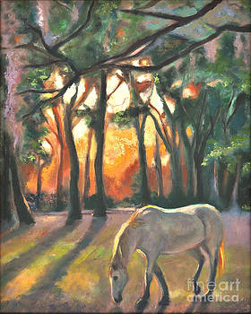 Horse in Sunset by Gayle Bell