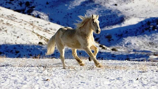 Horse in winter by Larry Stolle