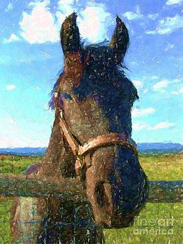 Horse looks over fence by Annie Gibbons