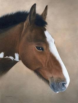 Horse Portrait Painting by Rachel Stribbling