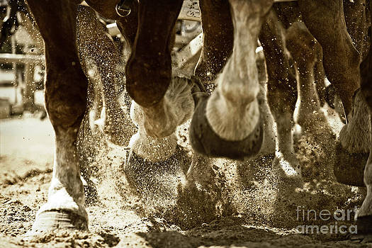 Horse Power and Teamwork by Lincoln Rogers
