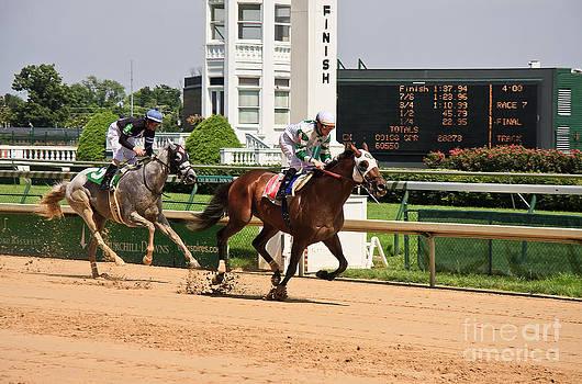 Jill Lang - Horse Racing