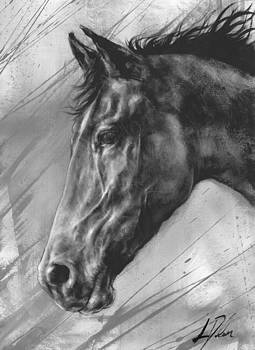 Horse Study by Leanne Dolan