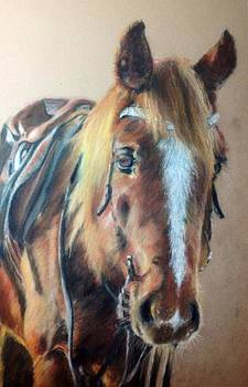 Horse by Tanya Patey