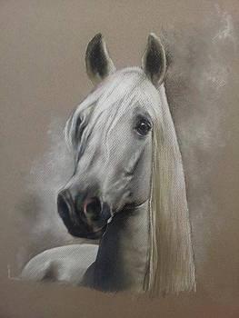 Horse Thinking I See You by Mahto Hogue