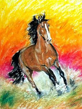 Marcello Cicchini - Horse Two