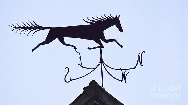 Horse Weathervane by Alan L Graham