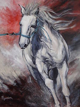 Cathy MONNIER - Horse working