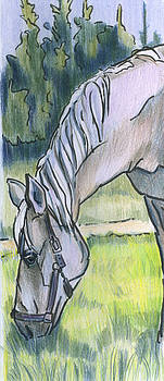 Horsegazer by Lelia Sorokina