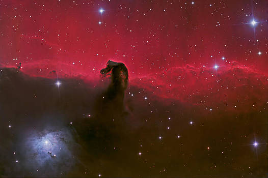 Horsehead nebula by Brian Peterson