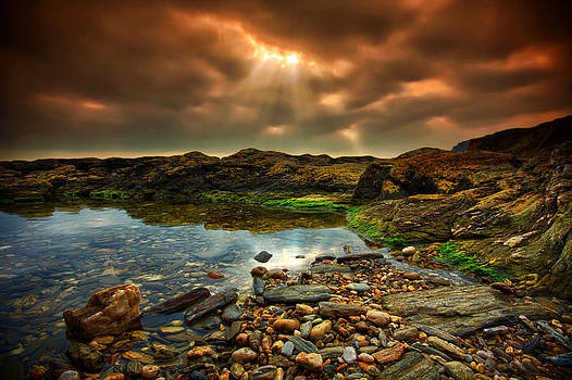 Horseley Cove rockpool by Mark Leader