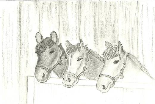 Horses 3 by Barbara Unruh