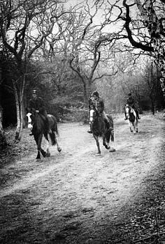 Horses Galloping by David Durham