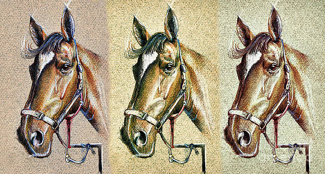 Horses hand drawing by Daliana Pacuraru